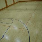 Alytaus-profesines-sporto-sale