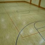 Alytaus-profesines-sporto-sale-2